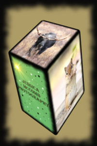 jess cube2