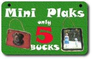 mini plaks 5bucks